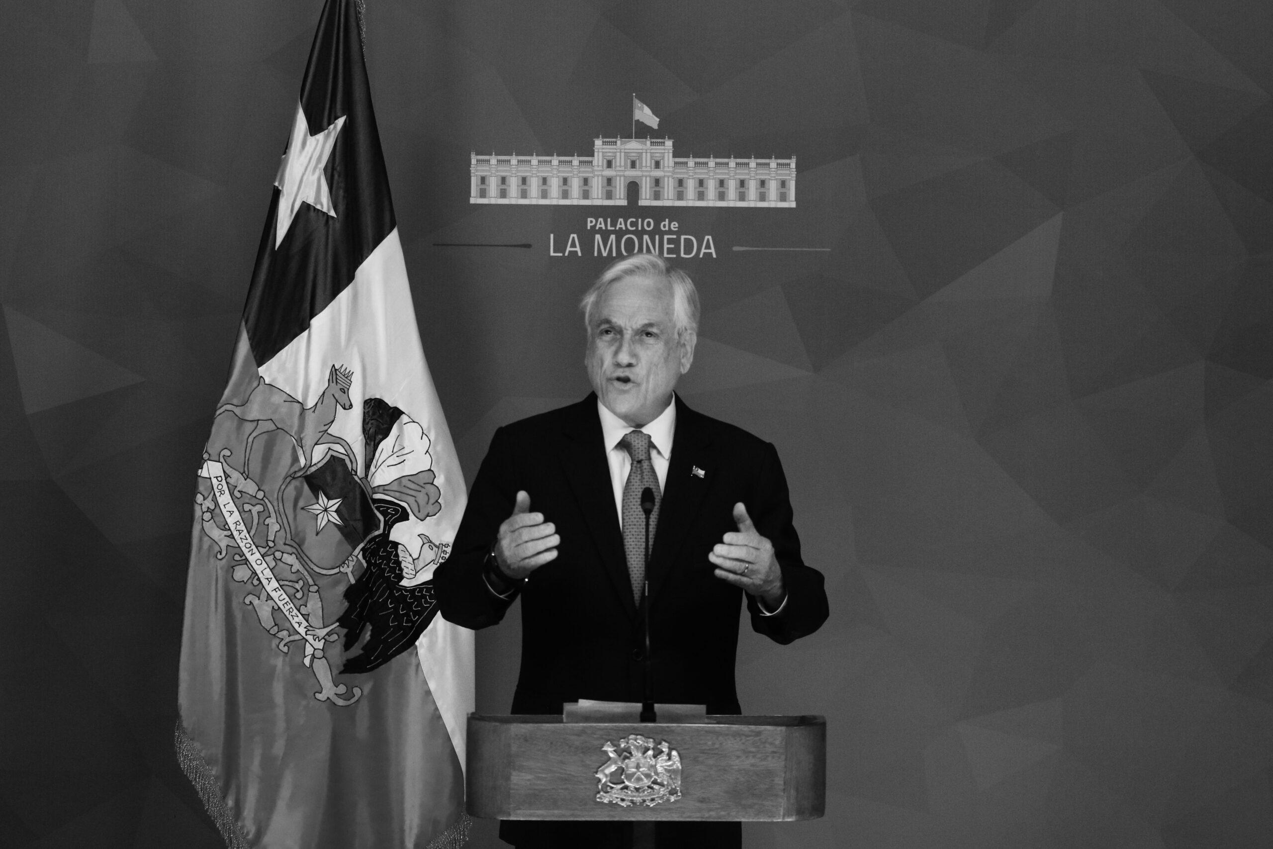 Piñera qlo