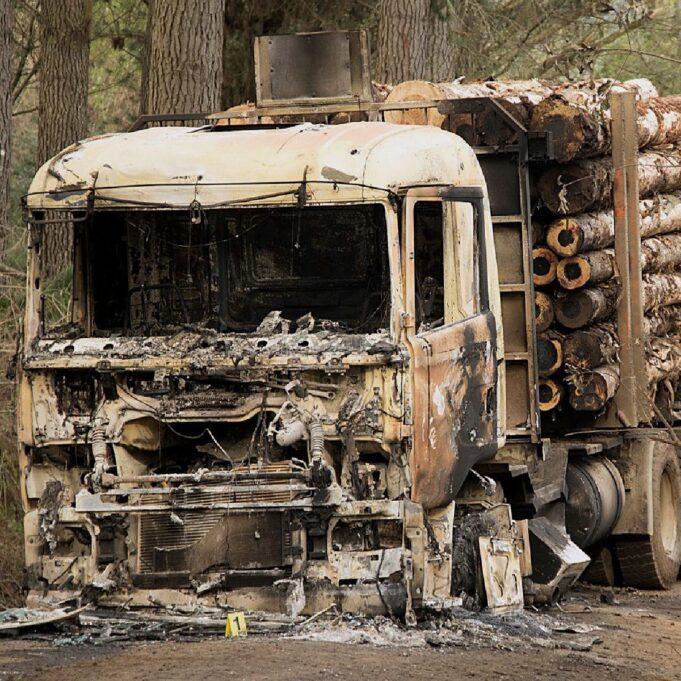 Camioneros Palos blancos
